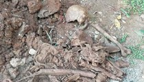 More human skeletons found in Sri Lanka's war torn north